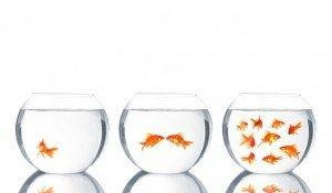 Business Etiquette On LinkedIn