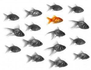 Three Ways to Get Noticed on LinkedIn